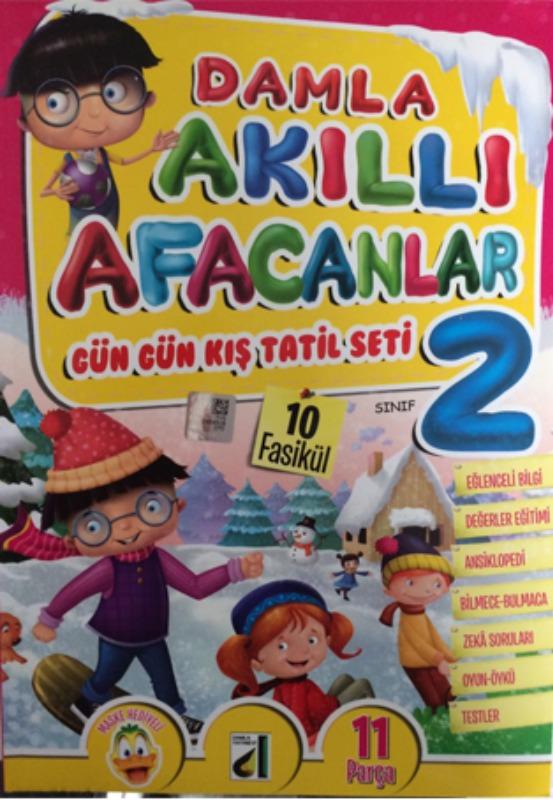 Tatil Kitabı Akıllı Afacanlar Gün Gün Kış Tatil Seti Damla Yayınları 2 Sınıf
